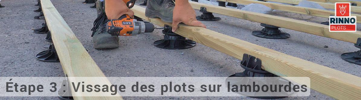 vissage-plots-sur-lambourdes